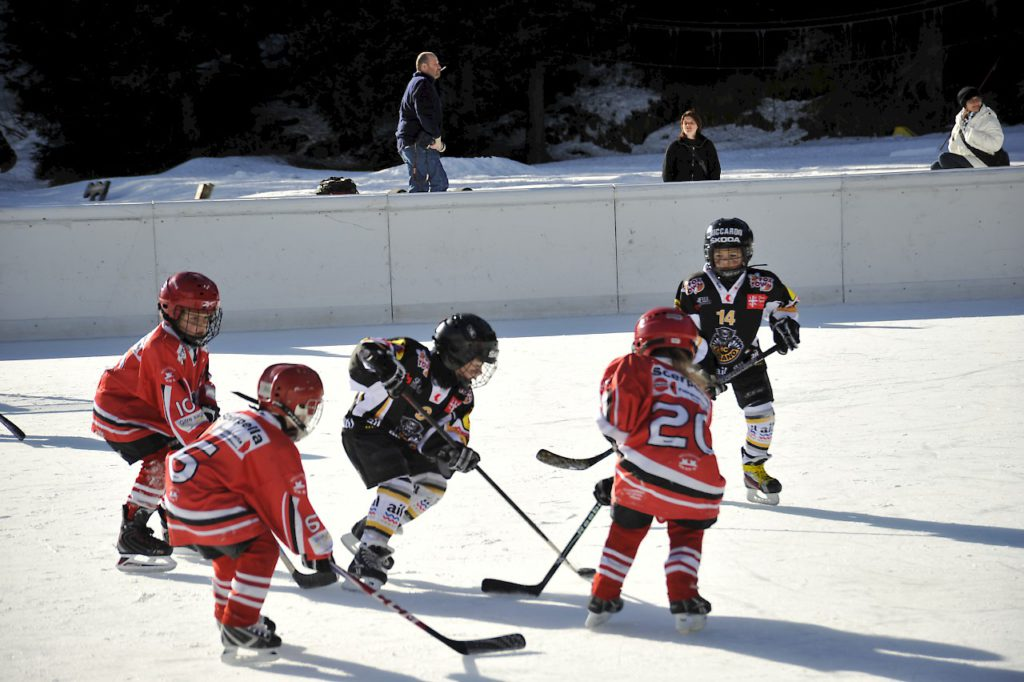 custom backyard ice rinks